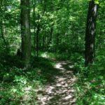 Abbey Trail Cropped copy